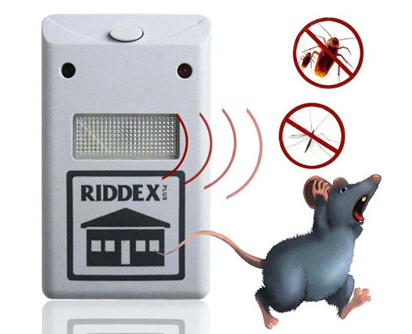 Sóng âm đuổi chuột có ảnh hưởng sức khỏe không?