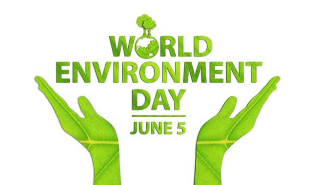 Ngày môi trường thế giới là gì? Ngày môi trường tại Việt Nam
